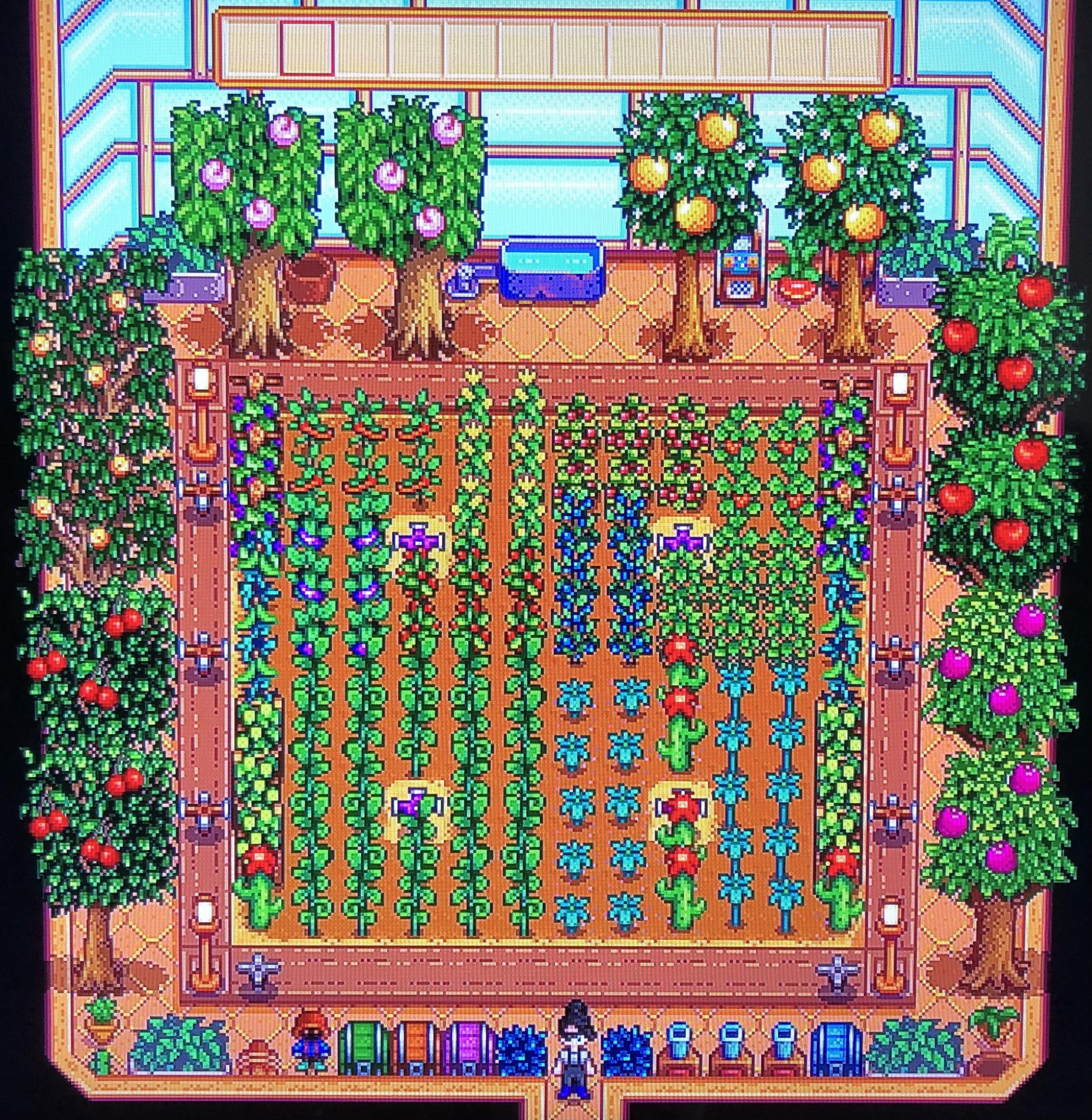 Stardew Valley Fruit Trees in Greenhouse