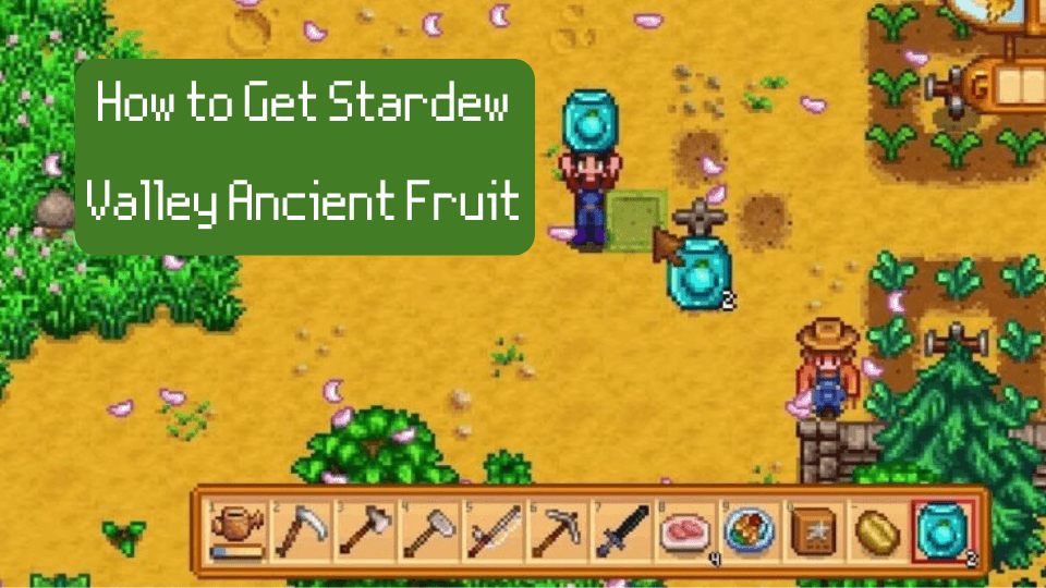 Ancient Fruit Stardew Valley: Tips To Find It & Get Profits