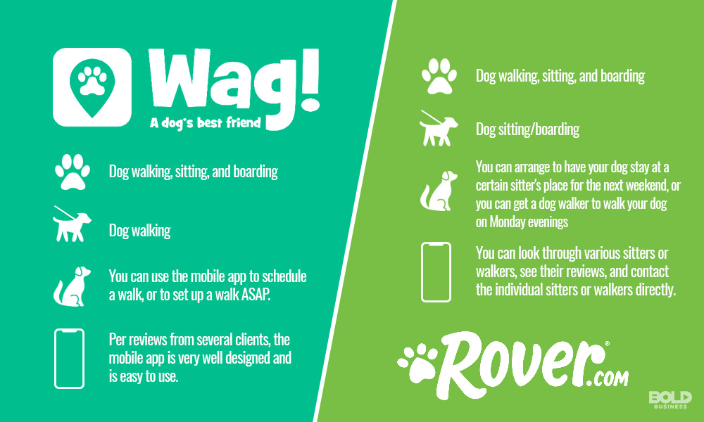 Rover and Wag - Which One is best