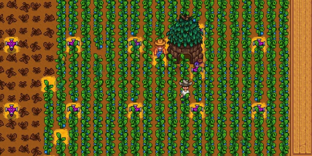 Uses of Ancient Fruit Stardew Valley