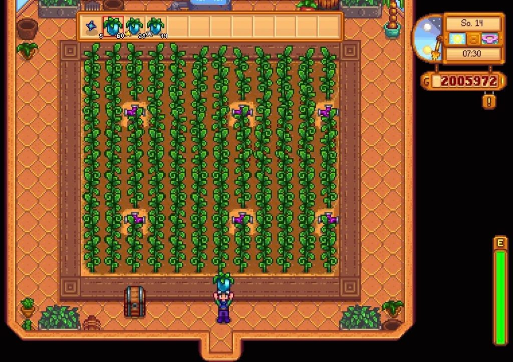Here is How to Get Ancient Fruit Stardew Valley