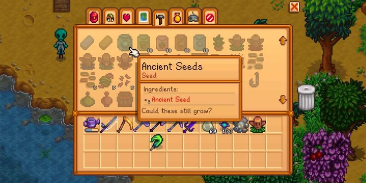 Planting the seeds to get Ancient Fruit Stardew Valley